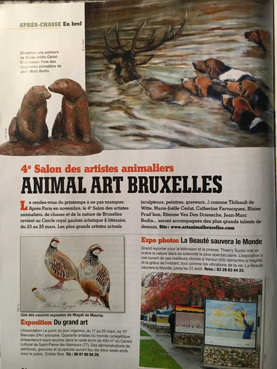 Animal Art Bruxelles